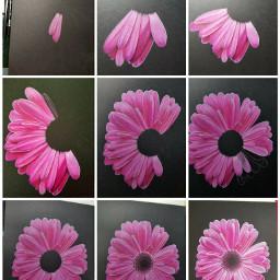 flower art drawing colorpencil beautiful
