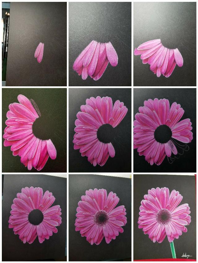 #flower #art #drawing #colorpencil #beautiful
