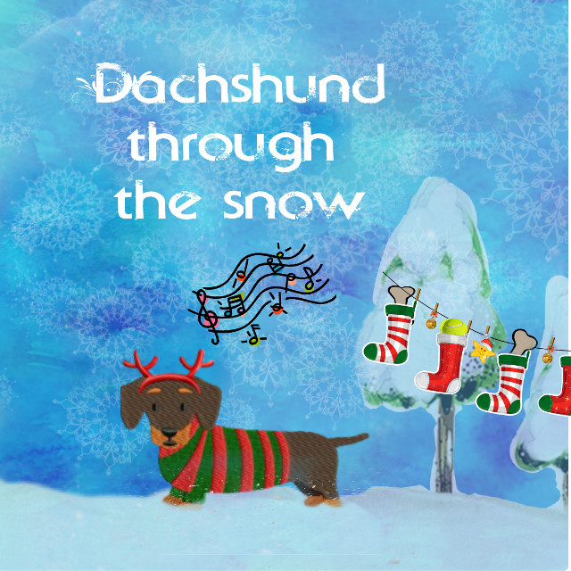 #christmaspuns #stockings #dailysticker #dachshund #christmas #stockingsstickerremix #dog #pets #cute #funnypets