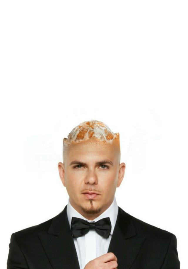 #Pitbull #MyEdit