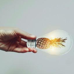 freetoedit pineapple🍍 pineapple brightideas bulb