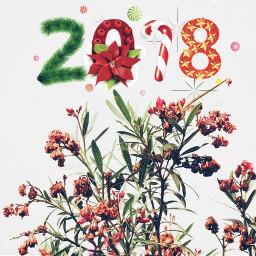 freetoedit 2018 newyear