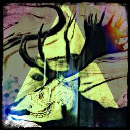 freetoedit deerhead psychedelic