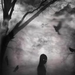 freetoedit darkart darknight girl birds