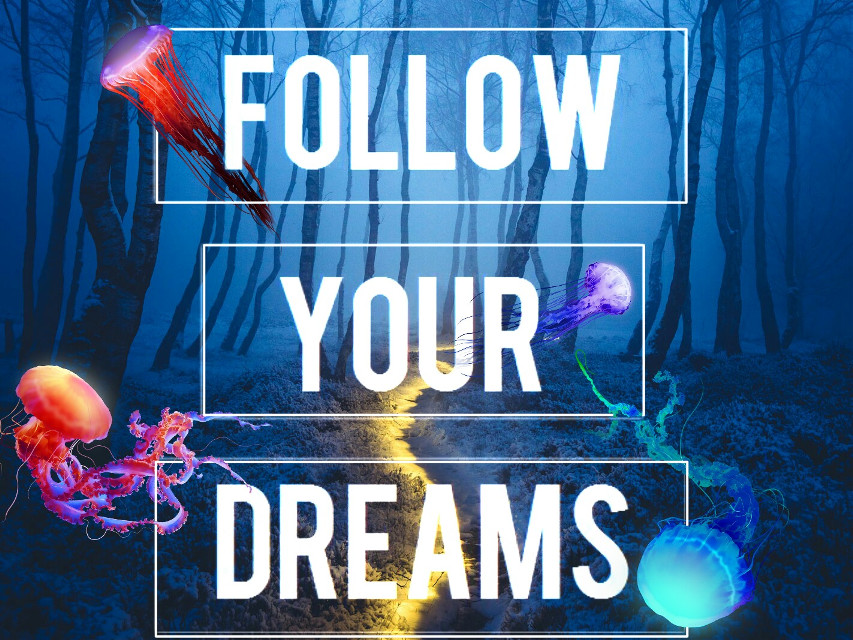 The Path isn't easy.. But be determined and follow your dreams. It'll get better  #stickers #jellyfish #night #woods #ecquote