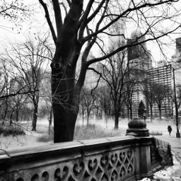 photography blackandwhite nyc fog faith