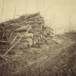 freetoedit wood logs log wooden scene