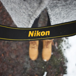 nikon forest photography freetoedit