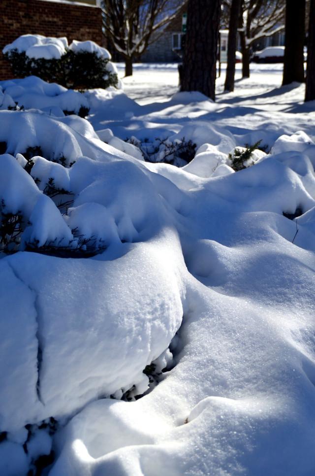 #winter #wintertime #snow #snowscape #coldoutside #cold