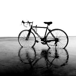 freetoedit cycle bicycle evening