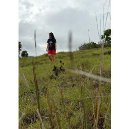 freetoedit picsartindo flores pesonaindonesia grassfield