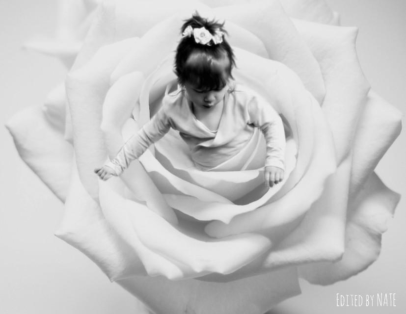#rose #girl #ballerina #blackandwhite