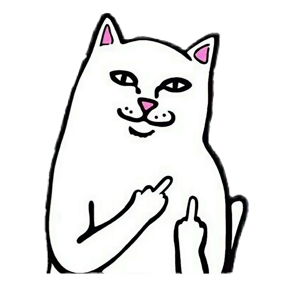 cat middlefinger icon pfp icons edit tumblr aesthetic...
