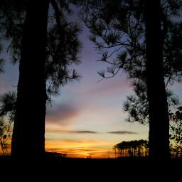 freetoedit sunrise sky sillouette morning