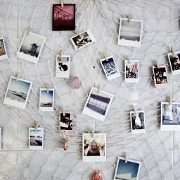 freetoedit pictures decoration myart instantphotos