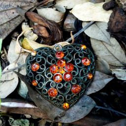 pcheartshapes heart pendant nature photography