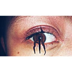 featureme eyes makeup edited likeforlike