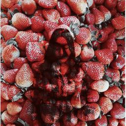 freetoedit strawberries myedit creative female