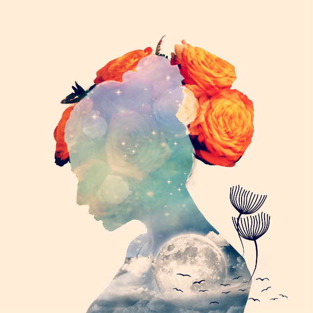 #freetoedit #girl #silhouette #doubleexposure #moon #clouds #flowers #birds #glitter #sparkle #sky #stars #colorful #colors