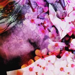 freetoedit unicornsarereal🦄 cherryblossomtree rainbowdreams blended
