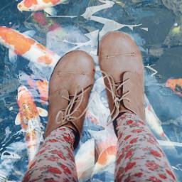 freetoedit socold boots boot watercoolerremix