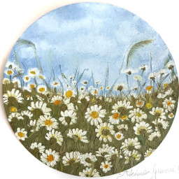 painting oilpainting daisies flower photography