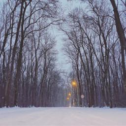 myphoto sony a7s winter snow