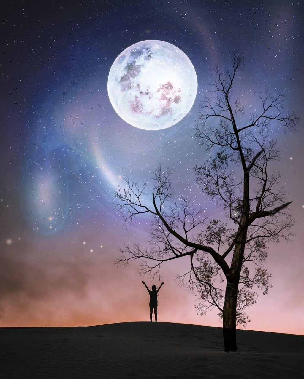 #freetoedit #moon #galaxy #bigbang #silhouette