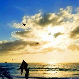 freetoedit island tropical ocean resort