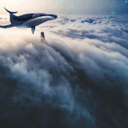 freetoedit fog sky palace fish shark night nightveiw minimal remixit