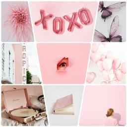 poopymoodboard moodboard pink freetoedit