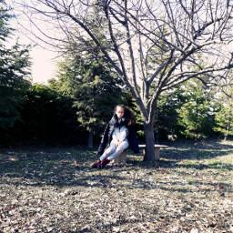 pctrees trees bench seattle girl freetoedit
