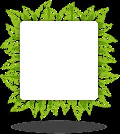 leaves frame green eco rectangle