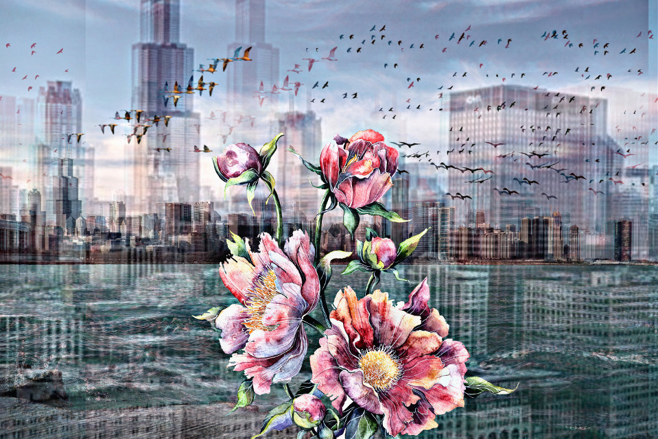 #freetoedit #city #flower #birds
