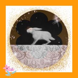 freetoedit ircbunnyrabbit bunnyrabbit