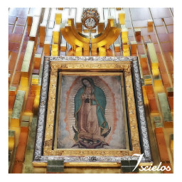 devition virgendeguadalupe virgenmaria fewpeople photography