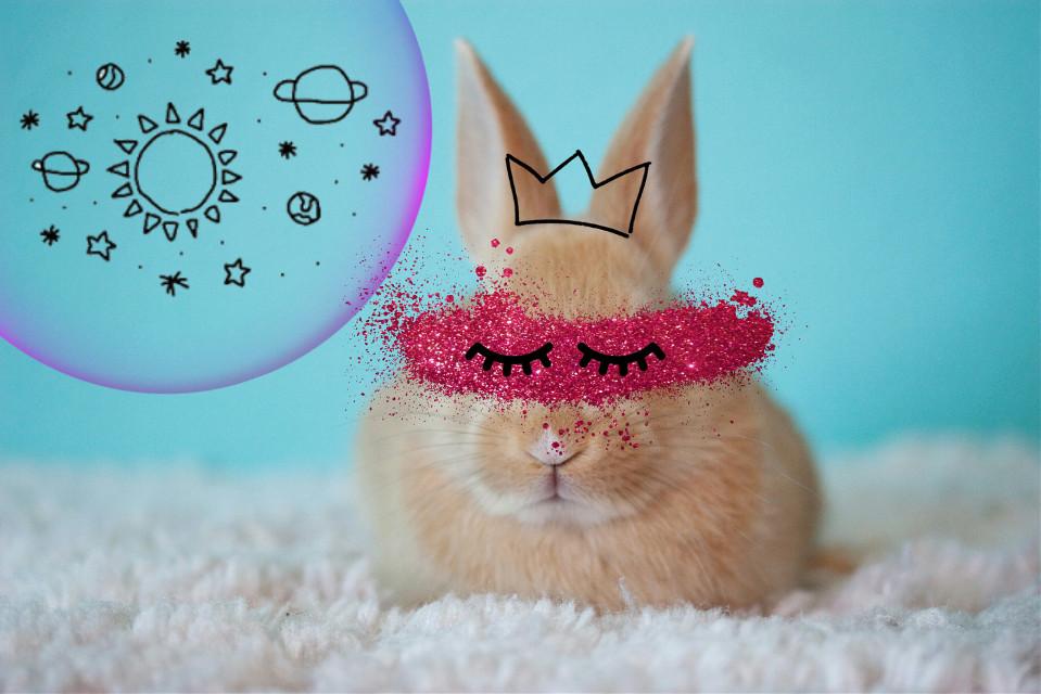 Inspired by @minitaehyung #ircbabybunny #babybunny #myedit #bunny #cute  @freetoedit @picsart