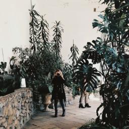 aestheticnature deepgreen