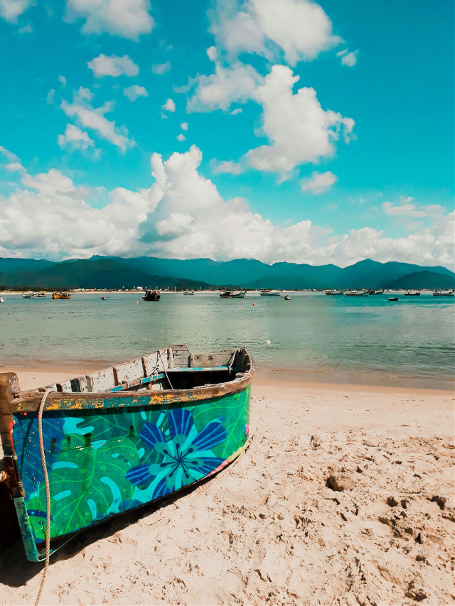 that place ❤#tbt #tropical #summer #colourful #colors #brazil #beach  #freetoedit