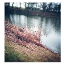 lake lakeside lakeview mirroring nature