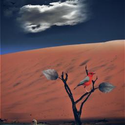 freetoedit cloudtree