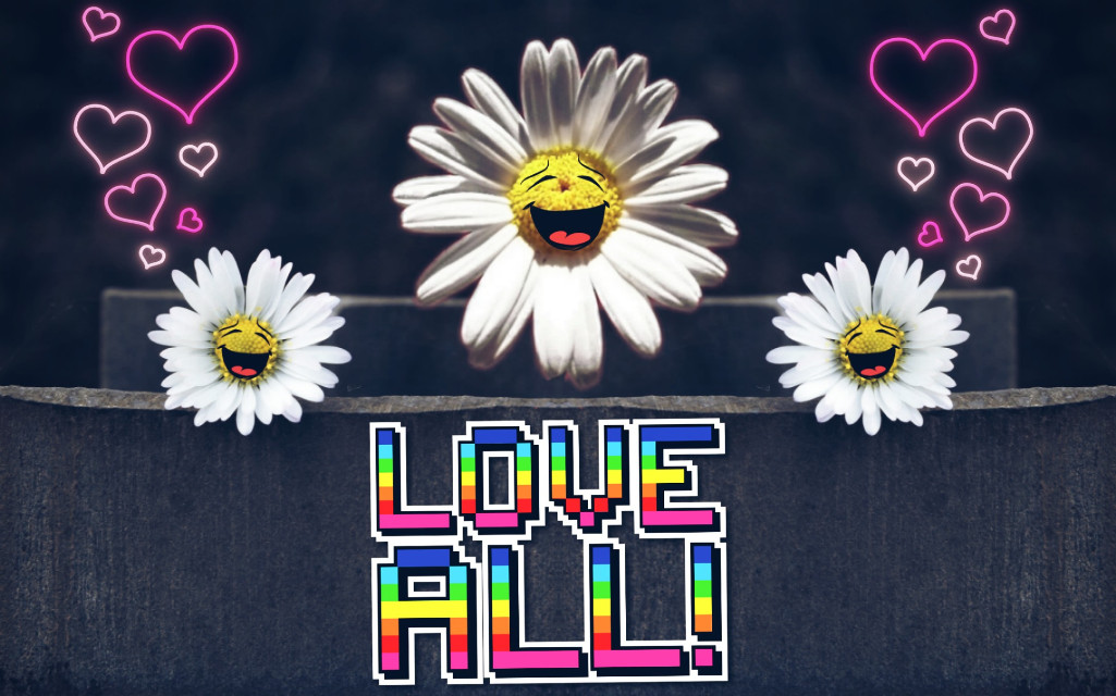 Have a fantastic day #daisy #flower #flowerpower #mirroreffect #stickers #happiness