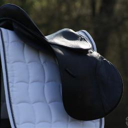 love equestrian horseequipment sattle canoneos1000d