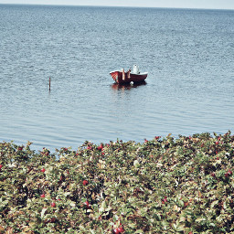 freetoedit nature travel boat water