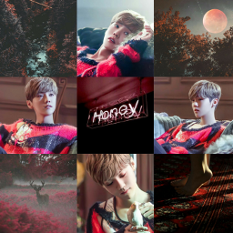 xiaoluhan luhan chinese cpopaesthetic cpopcollage
