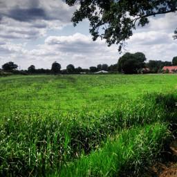 grass grasslands farm path clouds