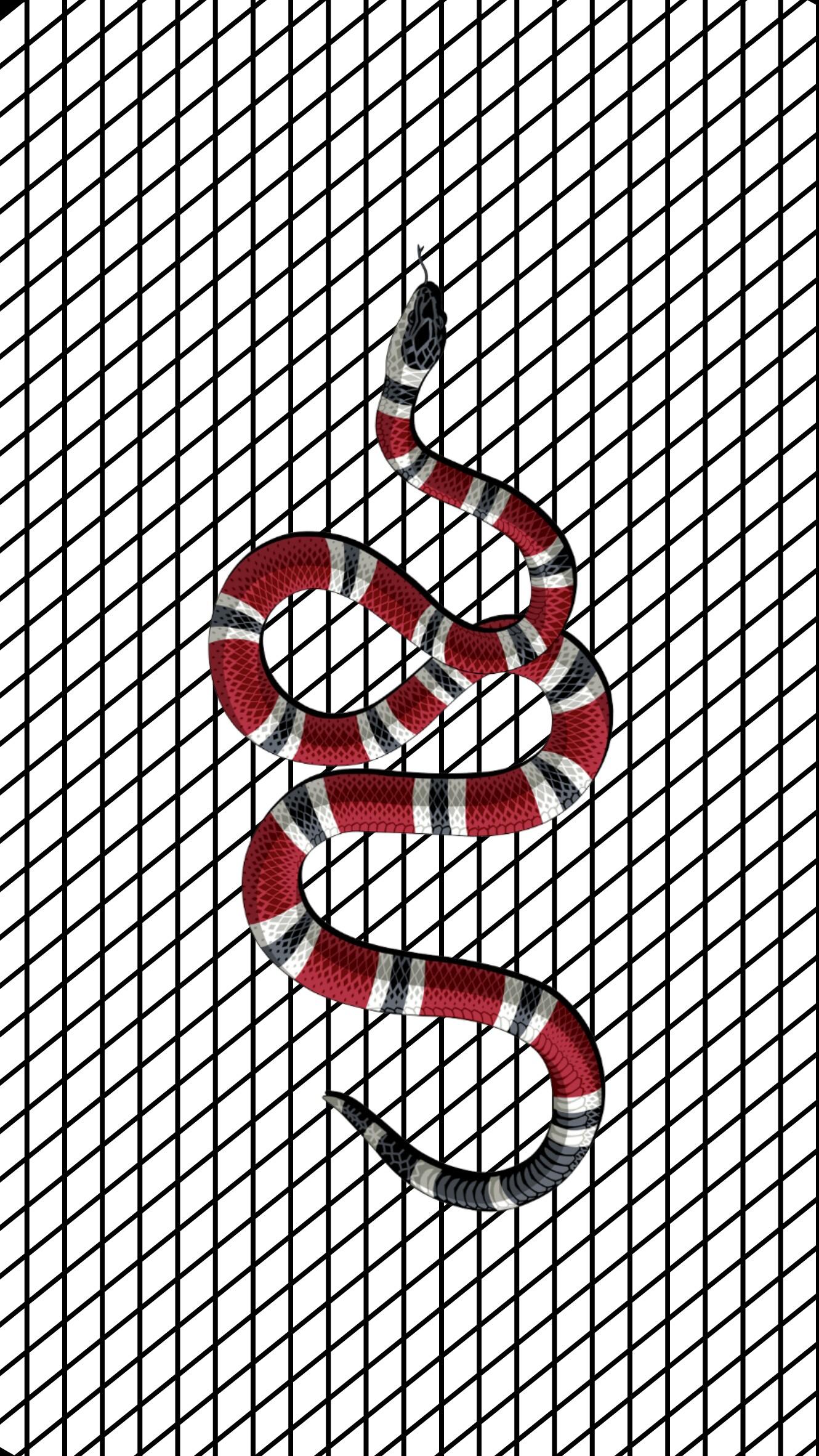 gucci snake wallpaper back background birthday blackan