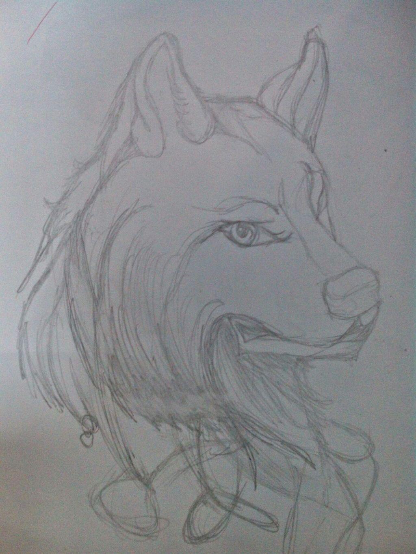 Dibujos Drawing Draw Lobo Wolf Tumblr