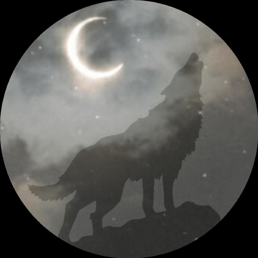 Loup Garou Attention A La Pleine Lune Goodnight