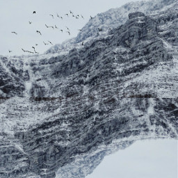 freetoedit myedit mountains birds sky ecsurreal